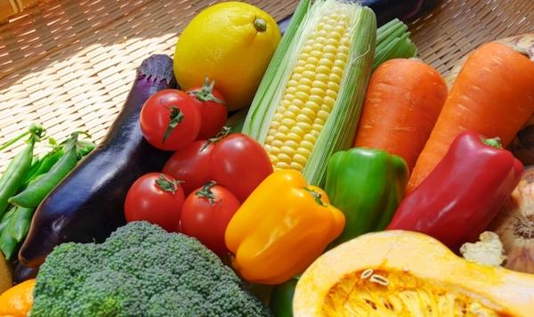バーベキュー 野菜