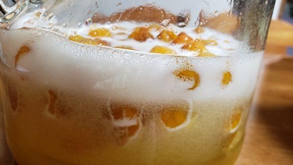 梅シロップ 発酵