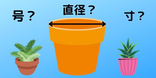 鉢 サイズ